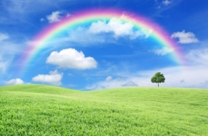 Green Field And Rainbow by Anusorn P nachol courtesy of www.freedigitalphotos.net