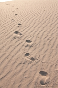 Texture of Sand by Sura Nualpradid courtesy of www.freedigitalphotos.net