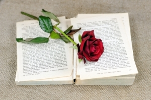 """Romantic book"" image by dan courtesy of FreeDigitalPhotos.net"