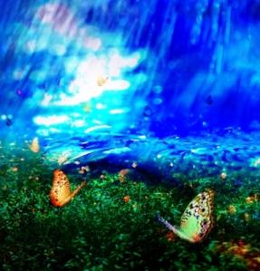 Butterflies On Field by jackthumm
